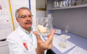 El laboratorio de catas de Granada, la ciencia del buen comer