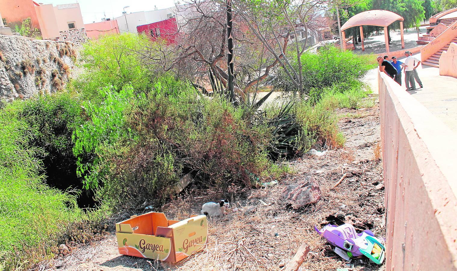 Almería, otra vez entre las ciudades con peor limpieza de España, según un estudio de la OCU