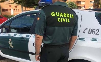 Decomisan 438 plantas de cannabis en dos viviendas en Guadahortuna