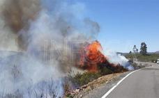 El Infoca trabaja en la extinción de dos incendios forestales en Huelva, uno en Doñana