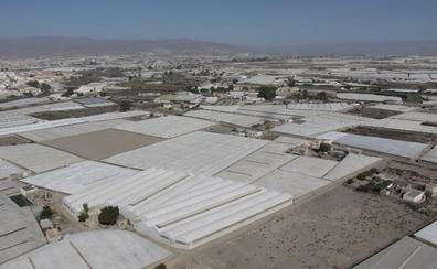 Los partidos de Almería acompañan el desarrollo del campo