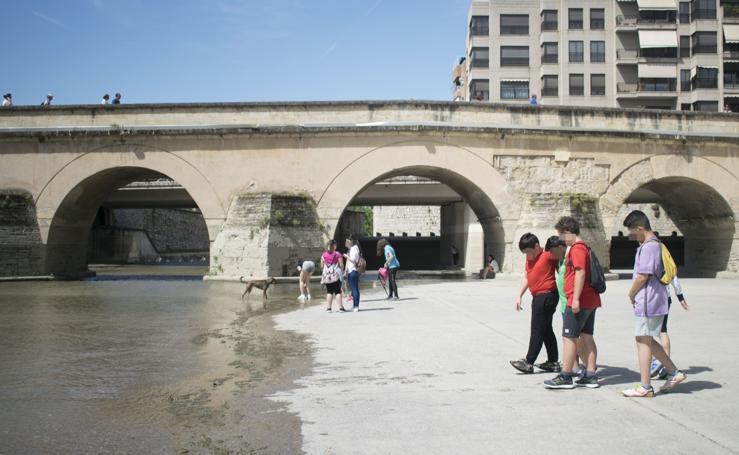 La ocupacion del río Genil, en imágenes