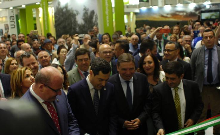 Las mejores fotos del primer día de Expoliva