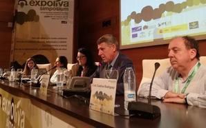 El mundo del aceite debate en Expoliva sobre la cata como sistema de clasificación de los aceites