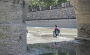 La Policía Local de Granada sancionará a quienes 'invadan' el Genil