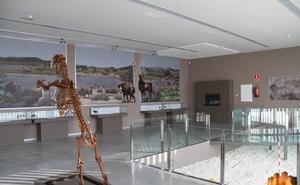 Un paseo por cinco museos poco conocidos de la provincia de Granada