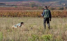 Los cazadores andaluces ya disponen del calendario 2019-20