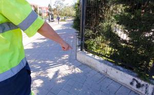 Los padres del niño de cuatro años encontrado de madrugada en Granada aseguran que estaban en casa