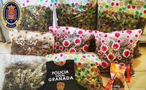 Un rastro de marihuana en el suelo lleva a una corrala de Granada donde hallan 25 kilos de droga