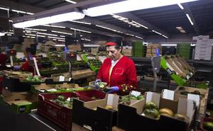El presidente de Honduras visita Motril para analizar las oportunidades de negocio con el sector agrícola local