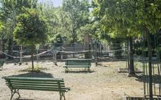 La plaza Escultor López Burgos «se ha convertido en una selva»
