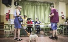 La revisión de las mesas electorales no cambia la distribución de escaños en Granada