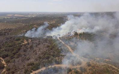 «Máxima precaución» ante un verano que se presenta «malo» por riesgo de incendios