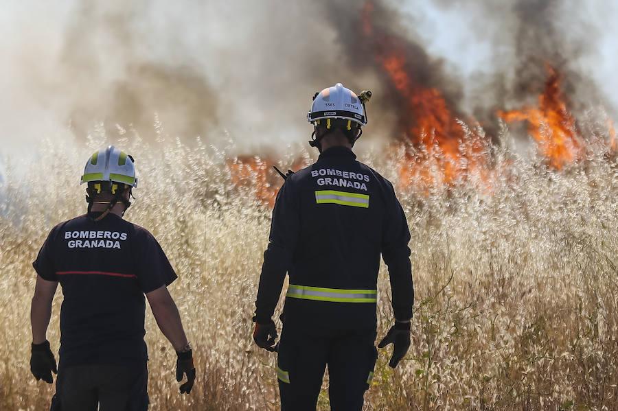 Bomberos acuden a sofocar un fuego en la Zona Norte