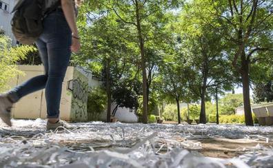 El parque del Cuarto Real de Santo Domingo aparece lleno de papel triturado
