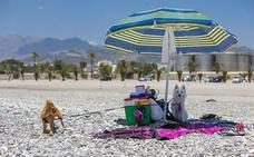 ¿Qué puedo hacer este verano en las playas de Almería?