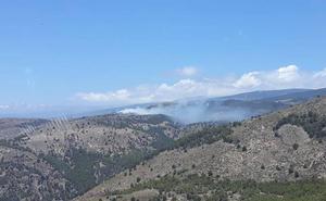 Declarado un incendio forestal en Laujar de Andarax