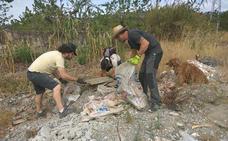 Buzos voluntarios retiran más de medio centenar de kilos de residuos de la playa de Cambriles