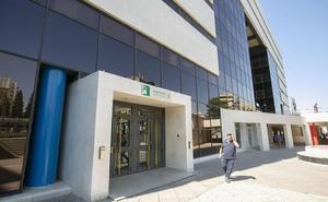 Un juzgado de Granada retira la custodia de una hija a la vicepresidenta de Infancia Libre