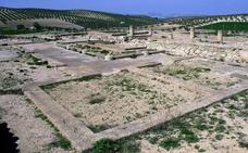 Jaén y Córdoba dominaban el mercado del aceite de oliva hace 2.000 años