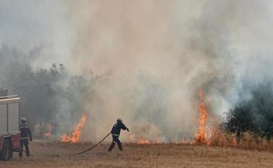 Arde una zona de cañaveral entre el Kinépolis y la urbanización La Joya