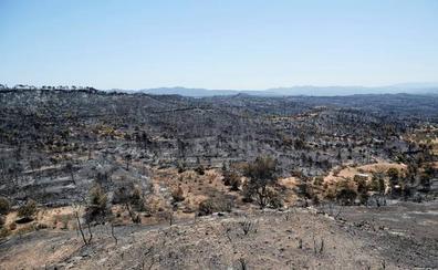 El incendio de Tarragona, a punto de ser controlado