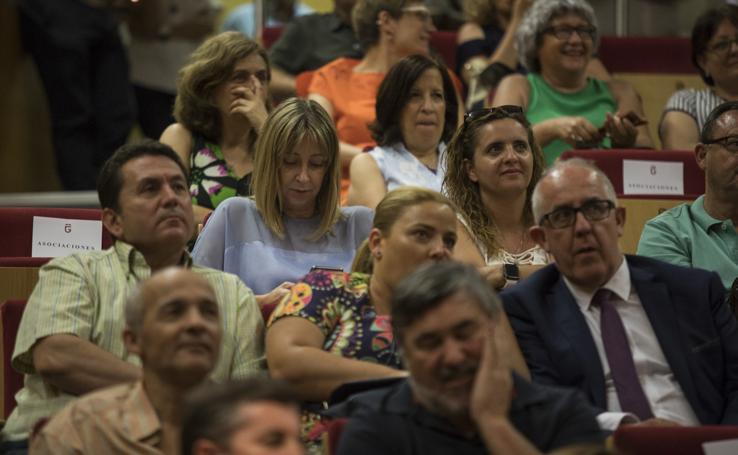El público en el pleno de constitución de la Diputación de Granada