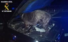 Sorprendidos con más de cuatro kilos de hachís en el coche en Villanueva Mesía