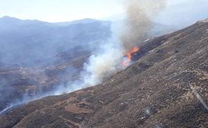 Controlado el incendio forestal declarado en Berja