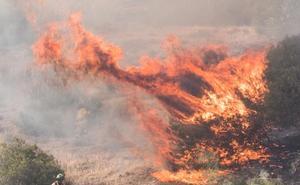 149 municipios de Granada están en riesgo de incendio