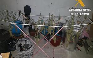Arrestado en Huércal de Almería tras ser interceptado un camión con marihuana en Francia