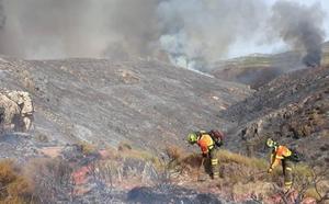 Bomberos de Granada y Jaén se suman al operativo para apagar el incendio forestal activo de Terque