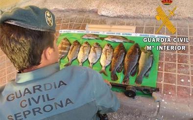 Denunciado un submarinista acusado de pesca ilegal en el Parque Natural de Cabo de Gata