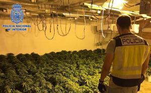 La Policía Nacional de Almería interviene el triple de marihuana que el año pasado en operativos antidroga