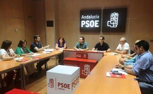 El PSOE de Granada rechaza cualquier intento de privatizar servicios