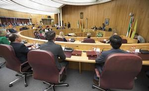 El PP recurrirá ante el Juzgado el pleno de organización de la Diputación de Granada