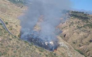 Amplio despliegue del Infoca por un incendio forestal en El Fargue