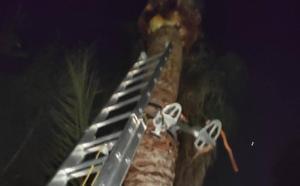 Bomberos de Almuñécar rescatan a un hombre que había quedado colgado boca abajo cuando limpiaba una palmera