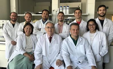 Científicos de la UGR construyen nuevos modelos de piel artificial con células madre para uso inmediato en grandes quemados