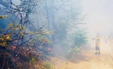 Incendio junto a las vías del tren en Jaén
