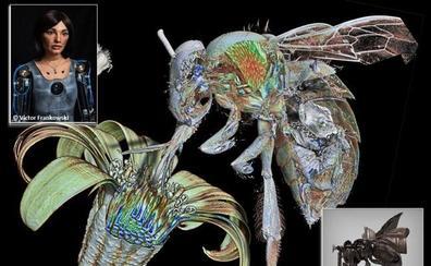 La investigación de imágenes de abejas en Granada inspira a un robot en Oxford para crear obras