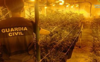 Macrooperación Algarabía de la Guardia Civil: marihuana, armas de fuego, falsos agentes, robos y 10 detenidos