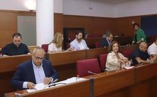 «Susana Peña y Daniel Ortega (Andalucía Por Sí) se han ido poco antes de ser expulsados»
