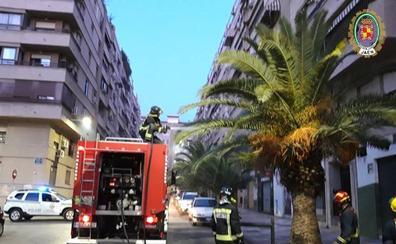 Una colilla incendia una palmera junto al Gran Eje