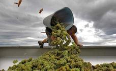 Más de 4.000 granadinos irán a vendimiar a Francia este verano