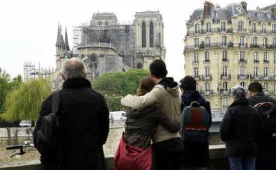 Piden parar las obras de reconstrucción de Notre-Dame por los altos niveles de plomo
