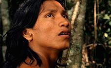 'El canto de la selva', un emocional viaje exótico