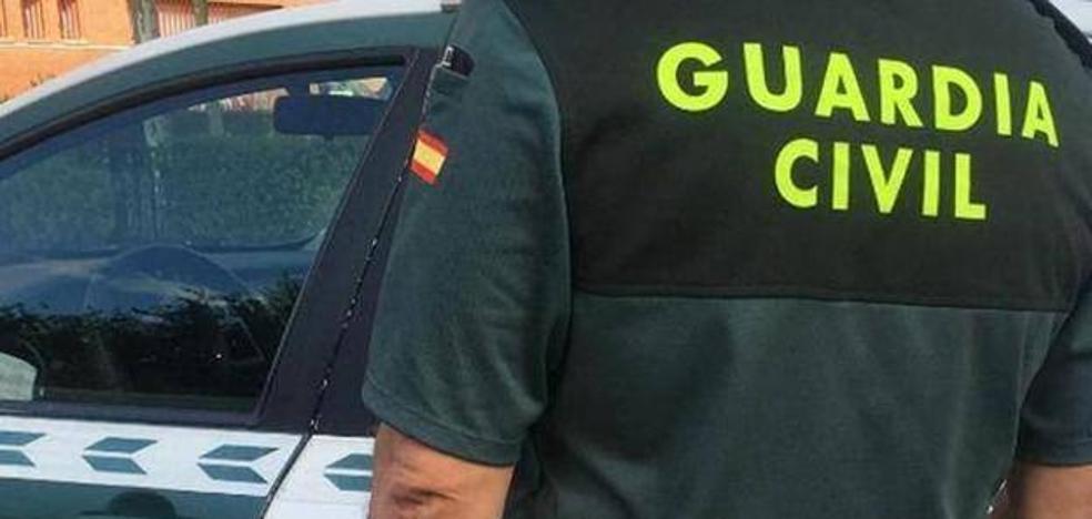 Dos investigados en Valdepeñas de Jaén acusados de maltratar a un perro y amenazar a la dueña al recriminarles