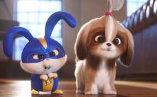 'Mascotas 2', una divertidísima secuela para el Capitán Pompón y los suyos