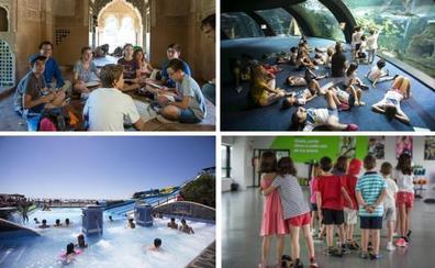6 planes educativos y divertidos para que los más pequeños disfruten del verano en Granada